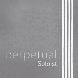 perpetual soloist